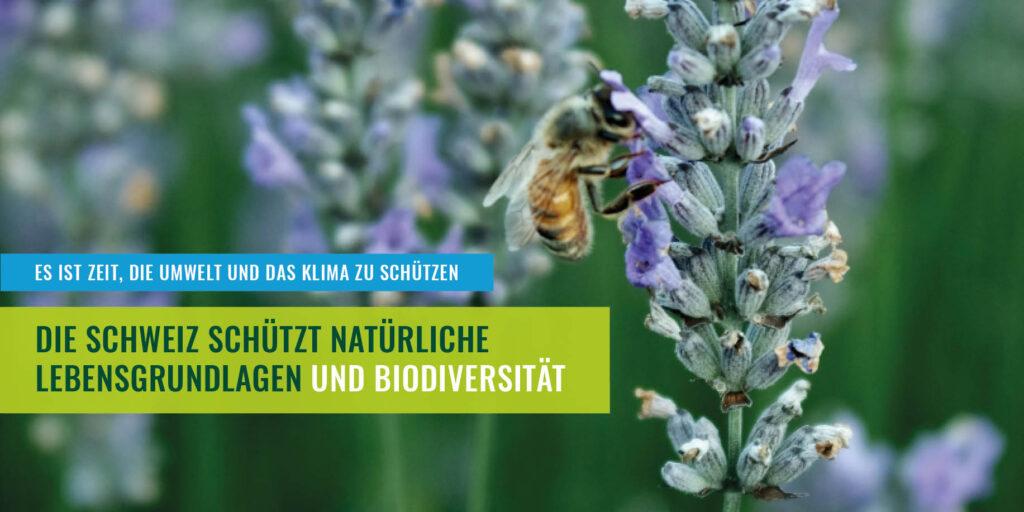 Natürliche Lebensgrundlagen und Biodiversität schützen